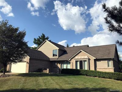 Troy Single Family Home For Sale: 4638 Whisper Way Drive
