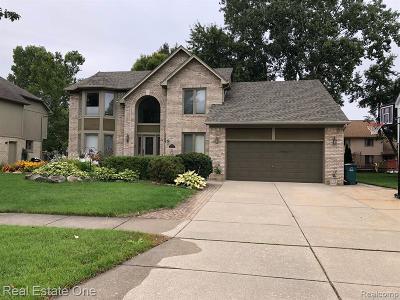 Troy Single Family Home For Sale: 4173 Vassar Drive