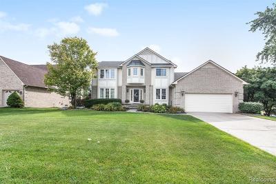 Farmington Hills Single Family Home For Sale: 37274 Aspen Drive