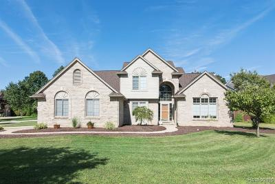 Livonia Single Family Home For Sale: 17275 Cross Winds Court