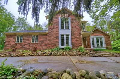 Bloomfield Twp Single Family Home For Sale: 941 Pine Thistle Lane