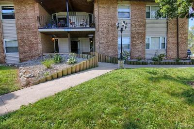 Condo/Townhouse For Sale: 29589 W Jefferson Avenue #10