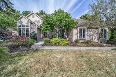 Farmington Hills Single Family Home For Sale: 27147 Winchester Court