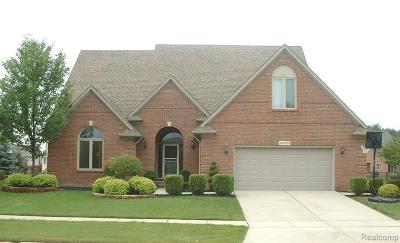 Macomb Twp Single Family Home For Sale: 20070 Breezeway Dr