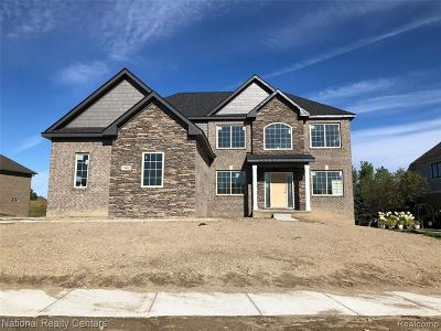 New Construction Homes for Sale in Oxford - Lake Orion, MI
