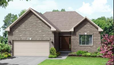 Holly Twp Single Family Home For Sale: 010 Hidden River E