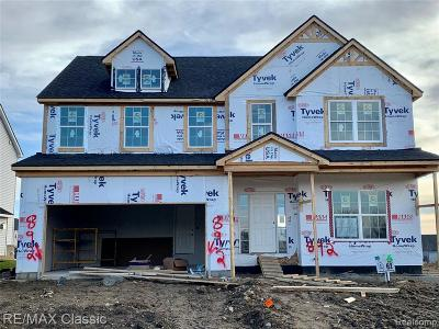 South Lyon MI Single Family Home For Sale: $374,925