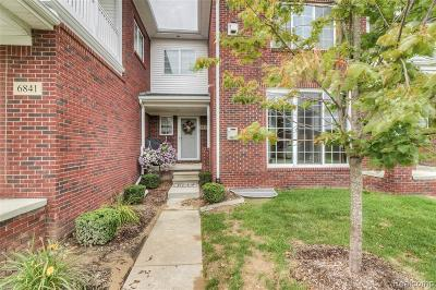 Washington Twp Condo/Townhouse For Sale: 6837 Boulder Pointe Drive