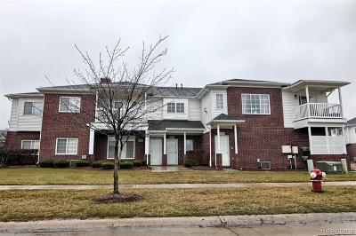 Sterling Heights Condo/Townhouse For Sale: 5753 Acorn Lane