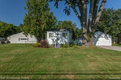 Livonia Single Family Home For Sale: 11991 Hartel Street