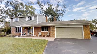 Troy Single Family Home For Sale: 368 Lange Drive
