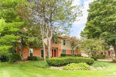 Farmington Hills Single Family Home For Sale: 37731 W Meadowhill Drive