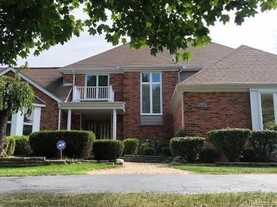 Rochester Hills Single Family Home For Sale: 3473 Wedgewood Drive