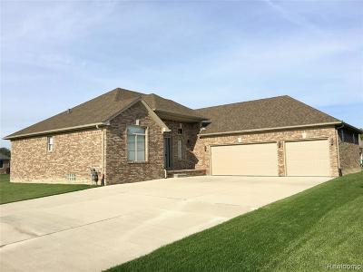 Macomb Twp Single Family Home For Sale: 20271 25 Mile Road