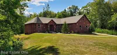 Salem Twp MI Single Family Home For Sale: $559,000