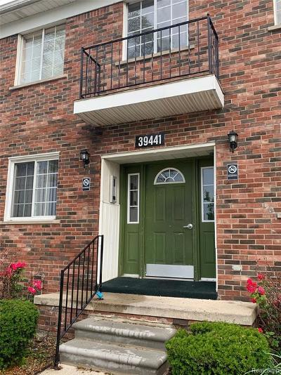 Sterling Heights Condo/Townhouse For Sale: 39441 Van Dyke Avenue #203