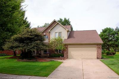 Troy Single Family Home For Sale: 4141 Morningdale Drive