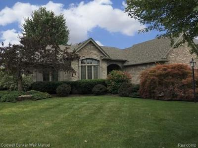 Shelby Twp MI Single Family Home For Sale: $319,900