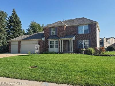 Commerce Twp Single Family Home For Sale: 405 Austin Street