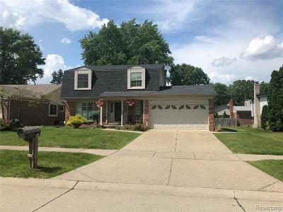 Sterling Heights Single Family Home For Sale: 12125 Volpe Dr