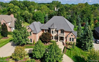 Northville Single Family Home For Sale: 47530 Bellagio Dr