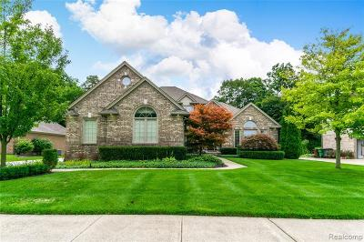 Shelby Twp Single Family Home For Sale: 48858 Kings Drive