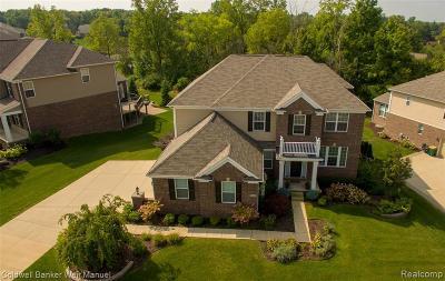 Farmington Hills Single Family Home For Sale: 22240 Lujon Drive