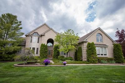 Lyon Twp MI Single Family Home For Sale: $575,000