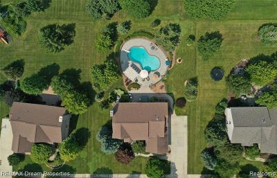Novi Single Family Home For Sale: 47506 Greenwich Drive