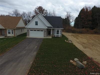 Single Family Home For Sale: 7453 Village Court