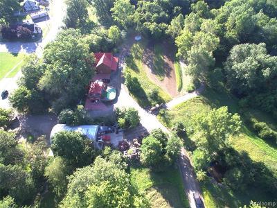 Flat Rock Single Family Home For Sale: 25801 E Huron River Drive