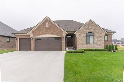 Macomb Twp Single Family Home For Sale: 49980 Colony Court