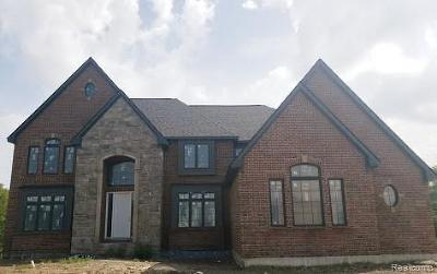 Novi Single Family Home For Sale: 47660 Wales Court