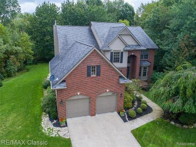 Wixom Single Family Home For Sale: 1468 Lakeside Court
