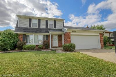 Canton Single Family Home For Sale: 6151 Raintree Drive