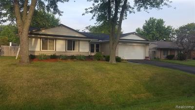 Novi Single Family Home For Sale: 22651 Chestnut Tree
