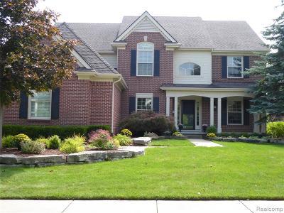 Novi Single Family Home For Sale: 23181 Argyle Street