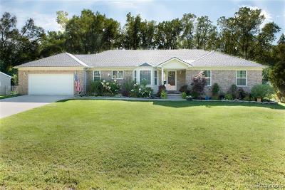 Farmington Single Family Home For Sale: 21323 Cass Street
