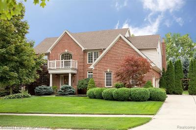Northville Single Family Home For Sale: 44182 Deep Hollow Circle