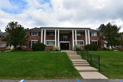 Northville Condo/Townhouse For Sale: 525 Fairbrook Street #204