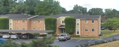 Northville Condo/Townhouse For Sale: 725 Randolph Street