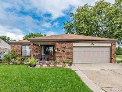 Macomb County Single Family Home For Sale: 11085 Garbor Drive