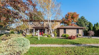 Macomb County Single Family Home For Sale: 16611 Terra Bella Street