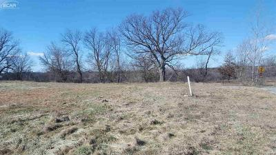Fenton MI Residential Lots & Land For Sale: $44,900