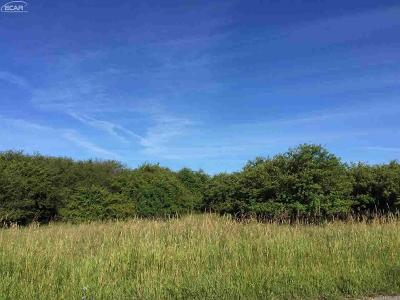 Manistee County Residential Lots & Land For Sale: Switalski