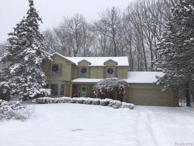 Rochester Hills Single Family Home For Sale: 437 Timberline