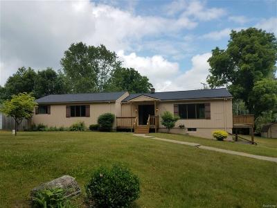 Brandon Twp Single Family Home For Sale: 3465 Hummer Lake