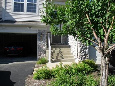 Holly Twp, Holly Vlg, Holly Condo/Townhouse For Sale: 503 Dockside