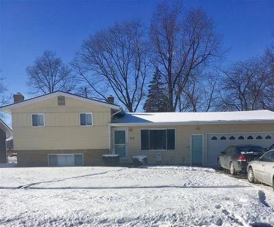 Flushing Single Family Home For Sale: 413 Chestnut