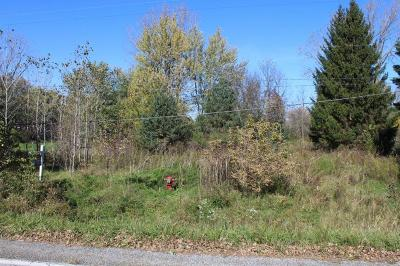 Grand Blanc Residential Lots & Land For Sale: E Reid